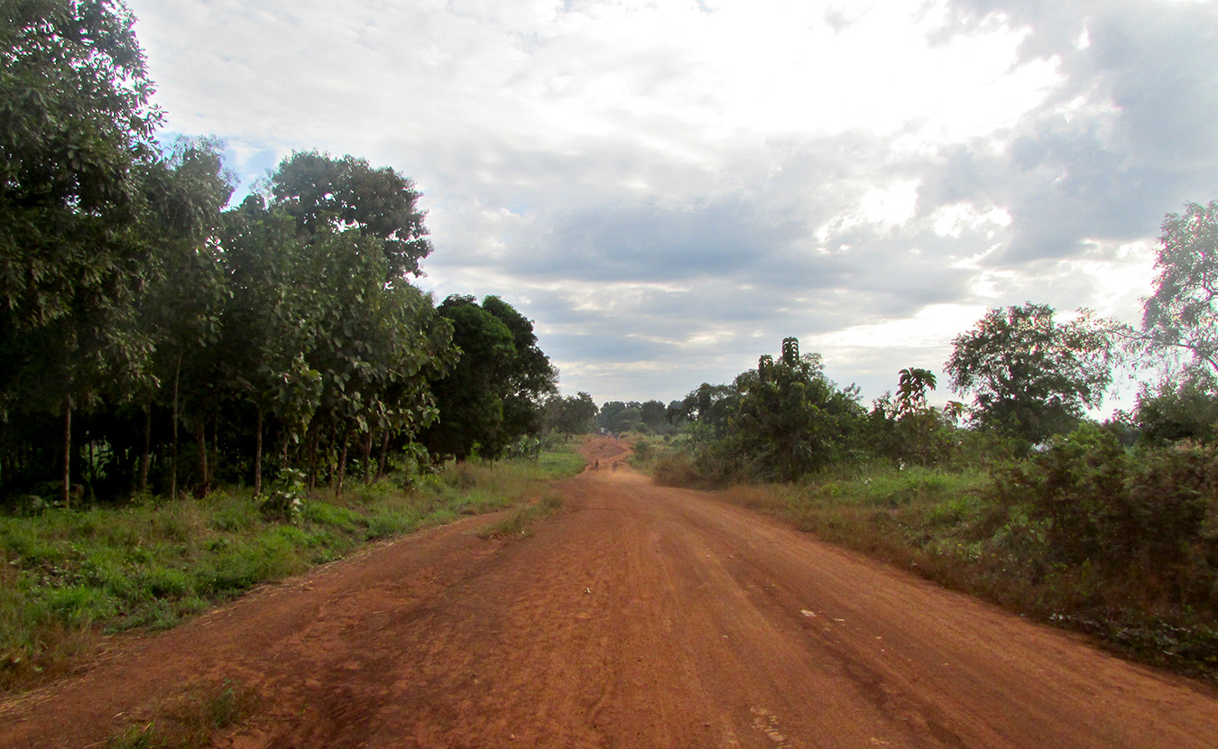The dirt road heading to Mundri on a Sunday morning at the end of rainy season.   Photo by Will and Theresa Reed