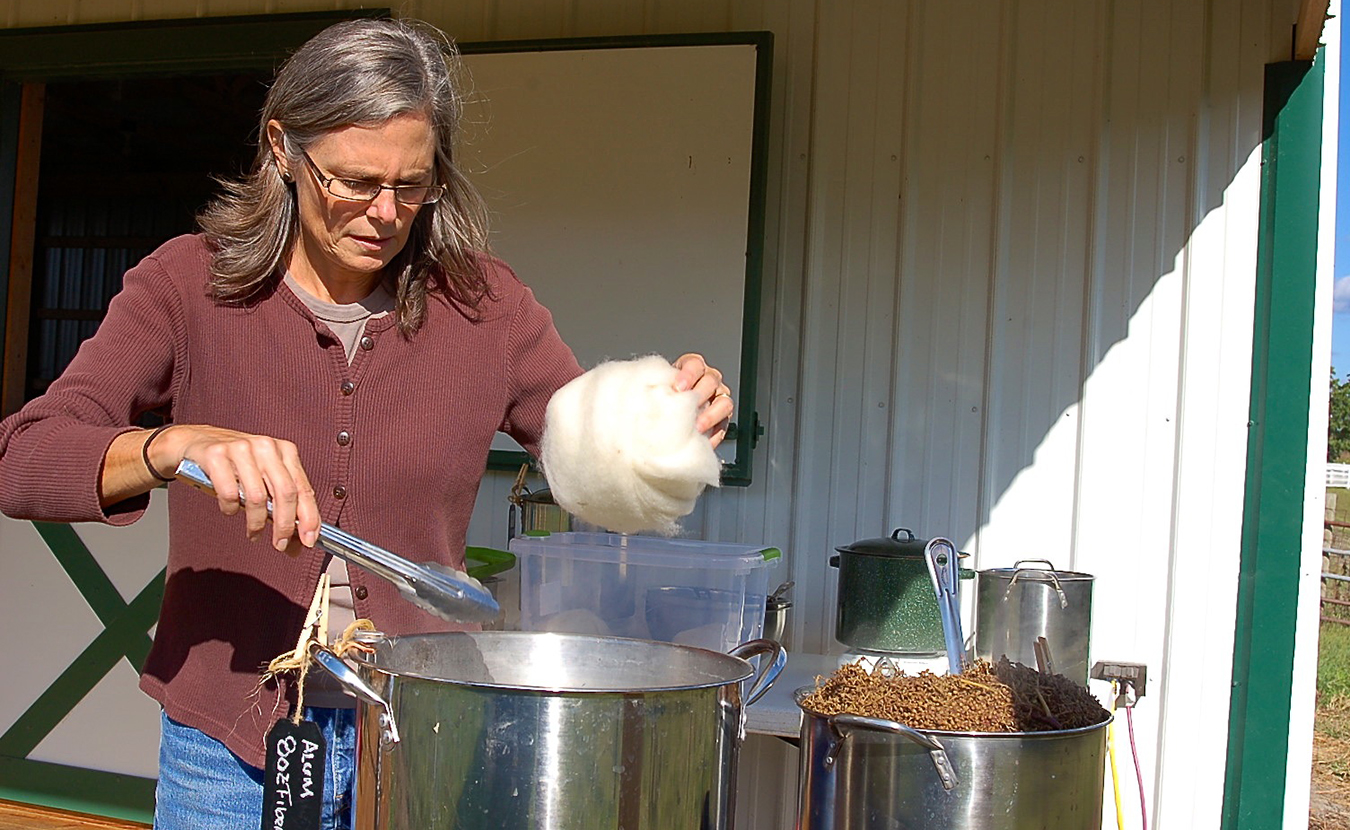 Whitney prepares undyed wool for the dyeing process by soaking it first in an alum bath. This step, called mordanting, encourages certain plant dyes to affix to the fiber more readily and more permanently. To her left, sumac berries simmer in hot water to release their pigment for dyeing. | Photo by Samuel Welsch Sveen