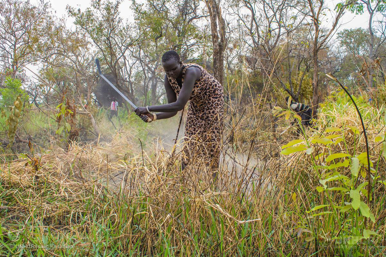 A refugee from South Sudan clears the bush to build her house at Maaji refugee resettlement in Adjumani. | Photo courtesy © UNHCR/Isaac Kasamani