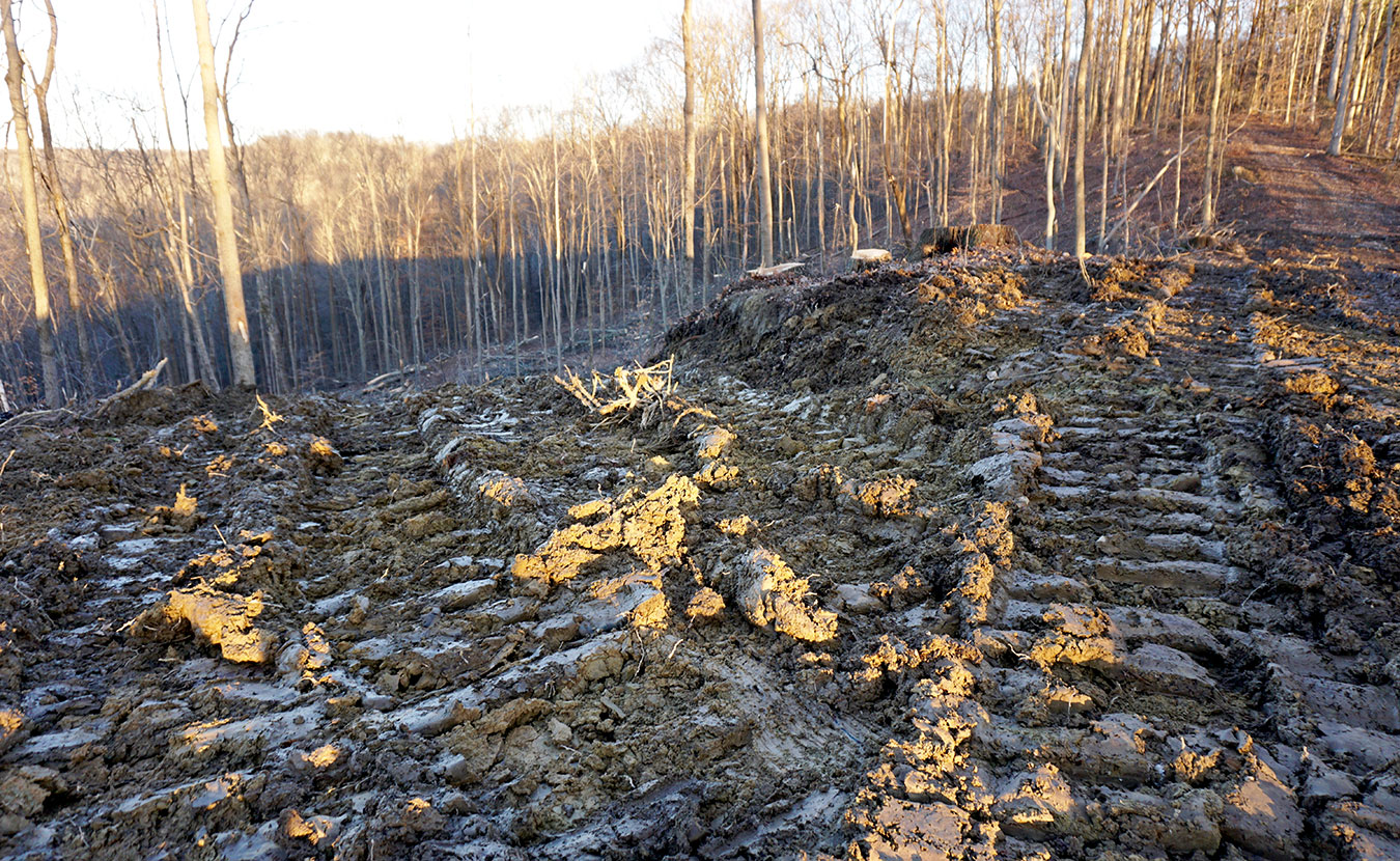 Instead of singletrack trail, Flaherty encountered rutted tire tracks and new clearings near the end of the Tecumseh Trail. | Courtesy photo