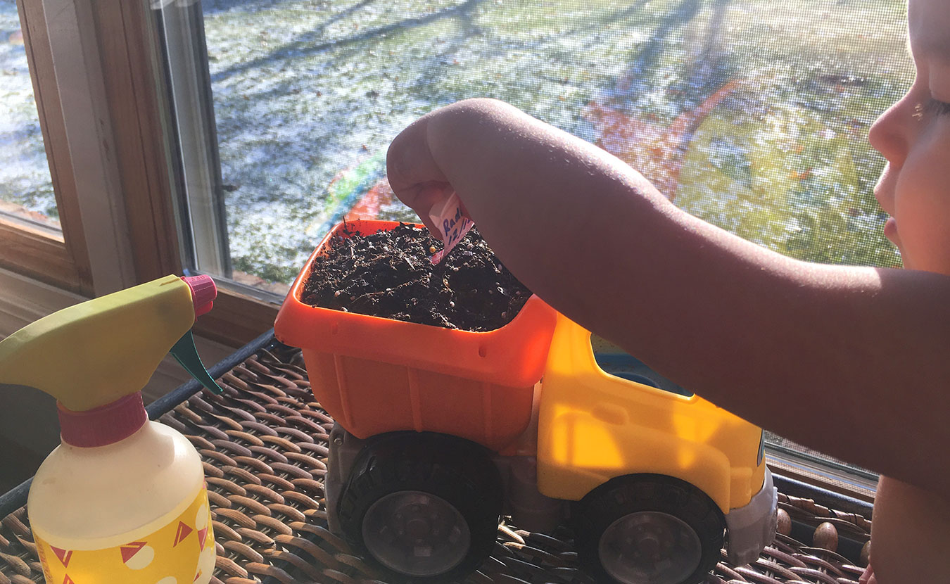 Writer Jared Posey says there are many ways to get kids interested in gardening. One is to make it look less like an adult activity — by using a toy as the garden, for example. | Photo by Katie Posey