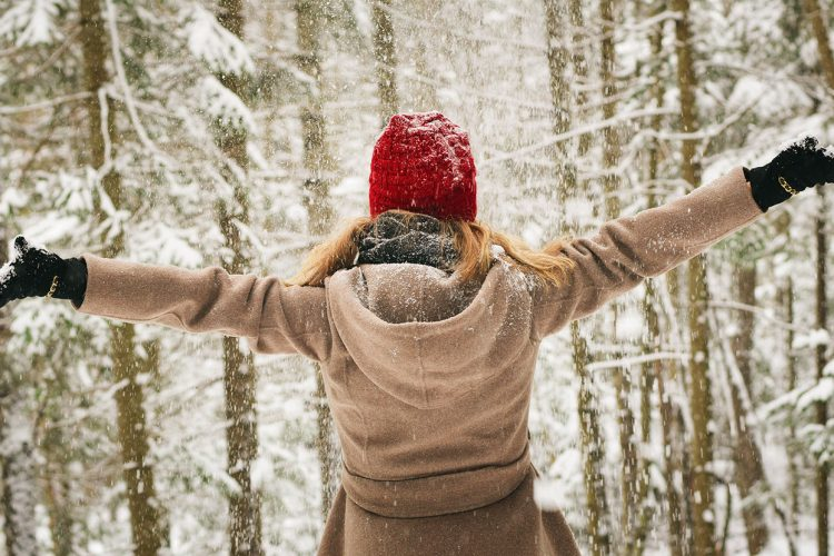 Feeling idle in the post-holiday lull? Writer and LP editor Dason Anderson has compiled a list of 12 happenings to get you out and about this winter season. Indoors, outdoors, alone or with friends, there's something to do for everyone until spring comes again. | Photo by Tim Gouw, Pexels