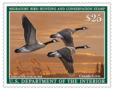 The federal duck stamp can be found at post offices and refuges. It raises money for migratory waterfowl.