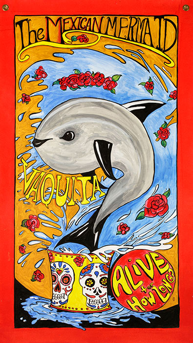"""Vaquita, the Mexican Mermaid."" 