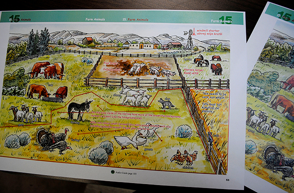 A page out of a yet-to-be-produced booklet that lists names of farm animals. Rugh types out suggestions and questions, both in English and in Czech, to send to the Czech Republic-based illustrator. | Photo by Nicole McPheeters