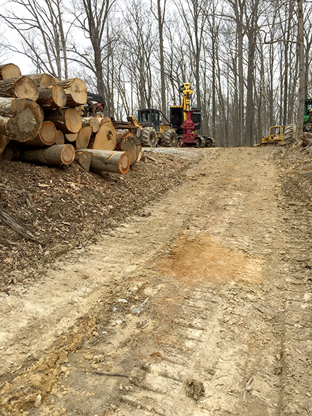 Logging on private property often requires heavy machinery, equipment, and vehicles, and the roads to haul them. | Limestone Post