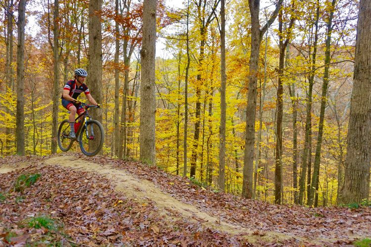 While the city's biking infrastructure leaves much to be desired, Bloomington has plenty more to back its claim as the Biking Capital of the Midwest, argues writer and avid biker Sean Starowitz. Pictured here, biker Jesse Smith rides on Hobbs Hollow Flow Trail in Brown County State Park. | Photo by Devin O'Leary