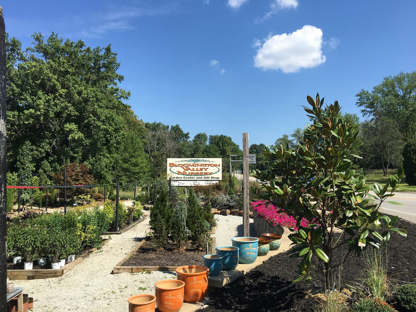 "Being in business for 53 years is no small feat. As one of Bloomington's more seasoned local businesses, Bloomington Valley Nursery has provided consistent service and also adapted to changes in the market over the years. At the moment, ""gardeners in Bloomington have an interest in returning to our roots, so to speak,"" says the nursery's manager, Jeanna Sexton."