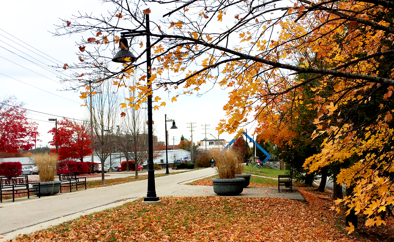 """A sea of golden leaves, an old railroad bridge, the chatter of downtown, front porches … these possess """"the reality of what Bloomington is,"""" writes C. D. Culper. In this second of our two feature stories on having a sense of belonging, Culper says everything Bloomington holds dear is held in """"the B-Line's pulse and patterns."""" 