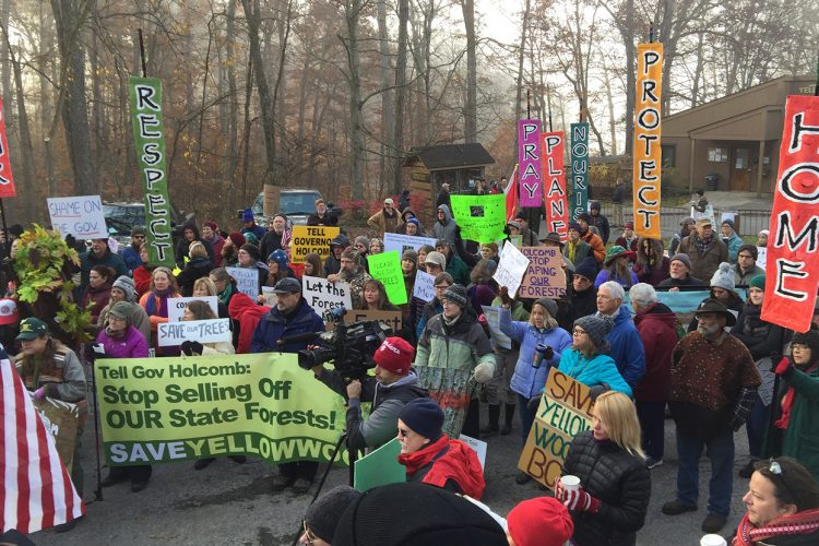 Protesters affiliated with the Indiana Forest Alliance work to protect 300 acres of the Yellowwood State Forest Back Country Area in Brown County in 2017. Since 2012, the Indiana Division of Forestry has increased logging of state forests by 400 percent, says IFA's Anne Laker. | Photo courtesy of the Indiana Forest Alliance