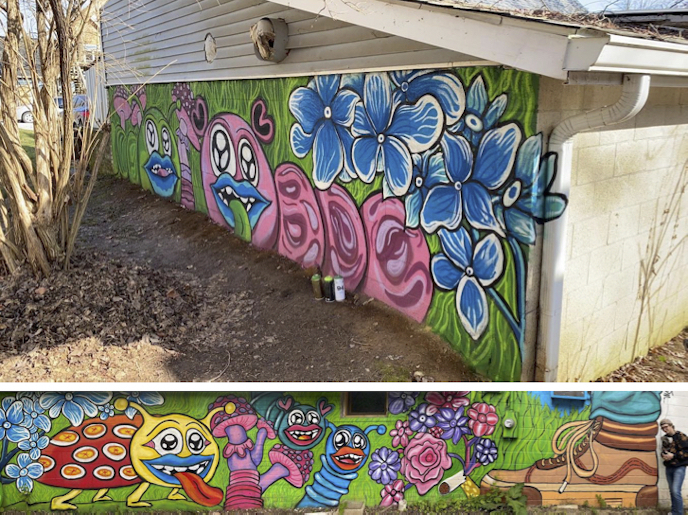 """Artist Trenton Musch completed this mural in May 2020 at Artisan Alley's Twisted Cowork location at 804 W. Kirkwood Ave. It is one continuous piece, entitled """"Creatures Beneath Our Feet.""""   Courtesy photo"""