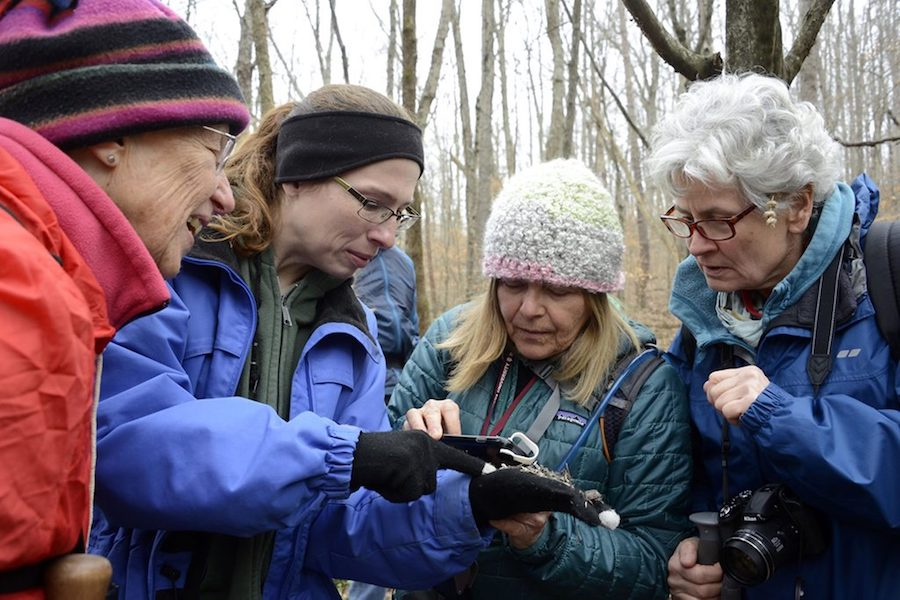 Jill Vance (second from left), a naturalist with Monroe Lake and an organizer of WINGS, guides members during an outdoor event hosted by Monroe Lake. | Photo by Martha Fox
