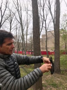 IU's Alex Jahn, pictured here with an American robin, says birds can be 'barometers of change, a species indicator to understand how changes are impacting the greater ecosystem.' | Courtesy photo